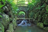 虎山溪。:IMG_10334.jpg