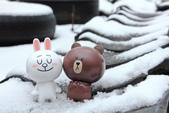 雪。陽明山:IMG_7182.jpg