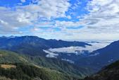 合歡山。雲海:IMG_13354.jpg