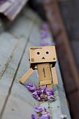 紫藤の恋。:IMG_3349.jpg