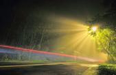 斜射光。:IMG_7311.jpg