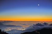 合歡山。雲海:IMG_13351.jpg