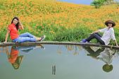 六十石山の金針花季。:IMG_10503.jpg