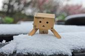 雪。陽明山:IMG_7180.jpg
