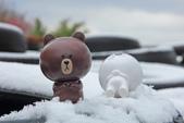 雪。陽明山:IMG_7186.jpg