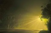 斜射光。:IMG_7298.jpg