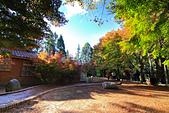 福壽山。松廬:IMG_5876.jpg