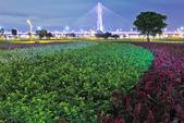 夜。幸福水漾公園:IMG_6141.jpg