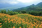 六十石山の金針花季。:IMG_10514.jpg