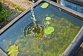 植物園。:IMG_4240.jpg