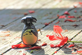 鳳凰花開。:IMG_9041.jpg