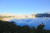 合歡山。雲海:IMG_1386.jpg