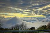 阿里山。夕陽雲海:IMG_7267.jpg