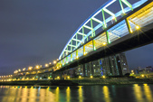 夜。環東大道:IMG_0314.jpg