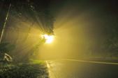 斜射光。:IMG_7304.jpg