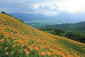 六十石山の金針花季。:IMG_10512.jpg
