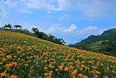 六十石山の金針花季。:IMG_10486.jpg