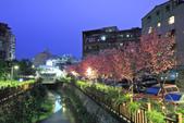 櫻。希望之河:IMG_8501.jpg