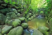 虎山溪。:IMG_10331.jpg