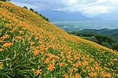 六十石山の金針花季。:IMG_10513.jpg
