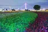 夜。幸福水漾公園:IMG_6143.jpg
