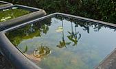 植物園。:IMG_4242.jpg