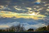 阿里山。夕陽雲海:IMG_7273.jpg