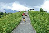 六十石山の金針花季。:IMG_10494.jpg