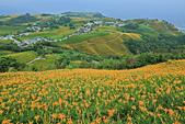 六十石山の金針花季。:IMG_10521.jpg