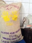 麻袋生豆:亞齊省塔瓦湖綠寶石曼特寧