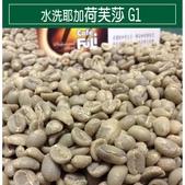 麻袋生豆:水洗耶加荷芙莎.jpg
