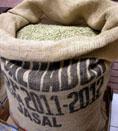 麻袋生豆:薩爾瓦多