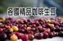 麻袋生豆:各國精品咖啡生豆-櫻桃篇-1.jpg