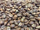 麻袋生豆:烘焙豆.jpg