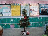 凱蒂貓烘焙屋:夢幻聖誕樹