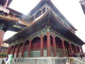 北京天津:IMGP7333.JPG