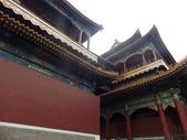 北京天津:IMGP7332.JPG