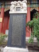 北京天津:IMGP7341.JPG