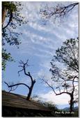 單車北橫-破病落跑之旅-回家的路上 by FUJI HS-20:DSCF4766.jpg
