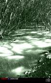 冬季八里-邊拍邊騎.....NIKKON D7000:DSC_1232-1.jpg