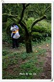 到三義阿公家過年--女兒的作品 BY FUJI  S-602 ZOOM:DSCF0020.JPG
