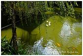 板橋林家花園-FUJIFILM X20:DSCF7639.JPG
