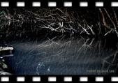 冬季八里-邊拍邊騎.....NIKKON D7000:DSC_1228.JPG
