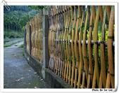 到三義阿公家過年--女兒的作品 BY FUJI  S-602 ZOOM:DSCF0089.JPG