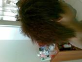 第一次的燙髮:1465491848.jpg
