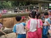 三年級戶外教學:P5120193.JPG