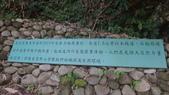 1060108~09竹山天空的院子:1060108~09竹山天空的院子