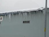 2010-02-24旭山動物園:2009022325旭山 場外市場 005.JPG