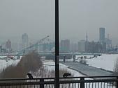 2010-02-24旭山動物園:2009022325旭山 場外市場 006.JPG