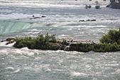 尼加拉大瀑布(2):43馬蹄瀑布頂的燕鷗.JPG